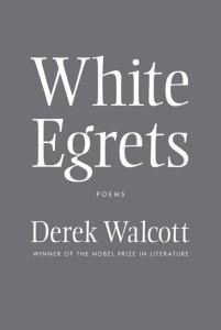 white-egrets